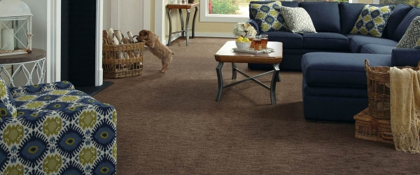 More About Carpet and Padding