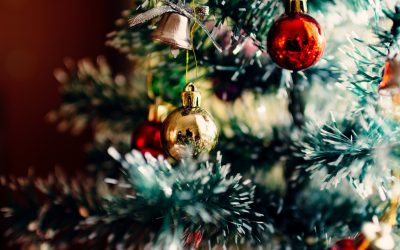 Protecting Your Floors from the Christmas Tree this Season